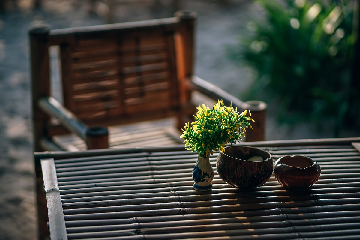 small plant on wooden table
